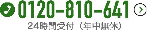 0120-810-641